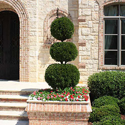 Landscaping Irmo SC